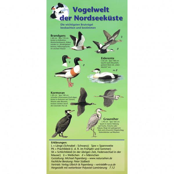 Vogelwelt der Nordseeküste