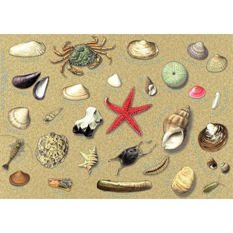 Tischset Funde am Strand